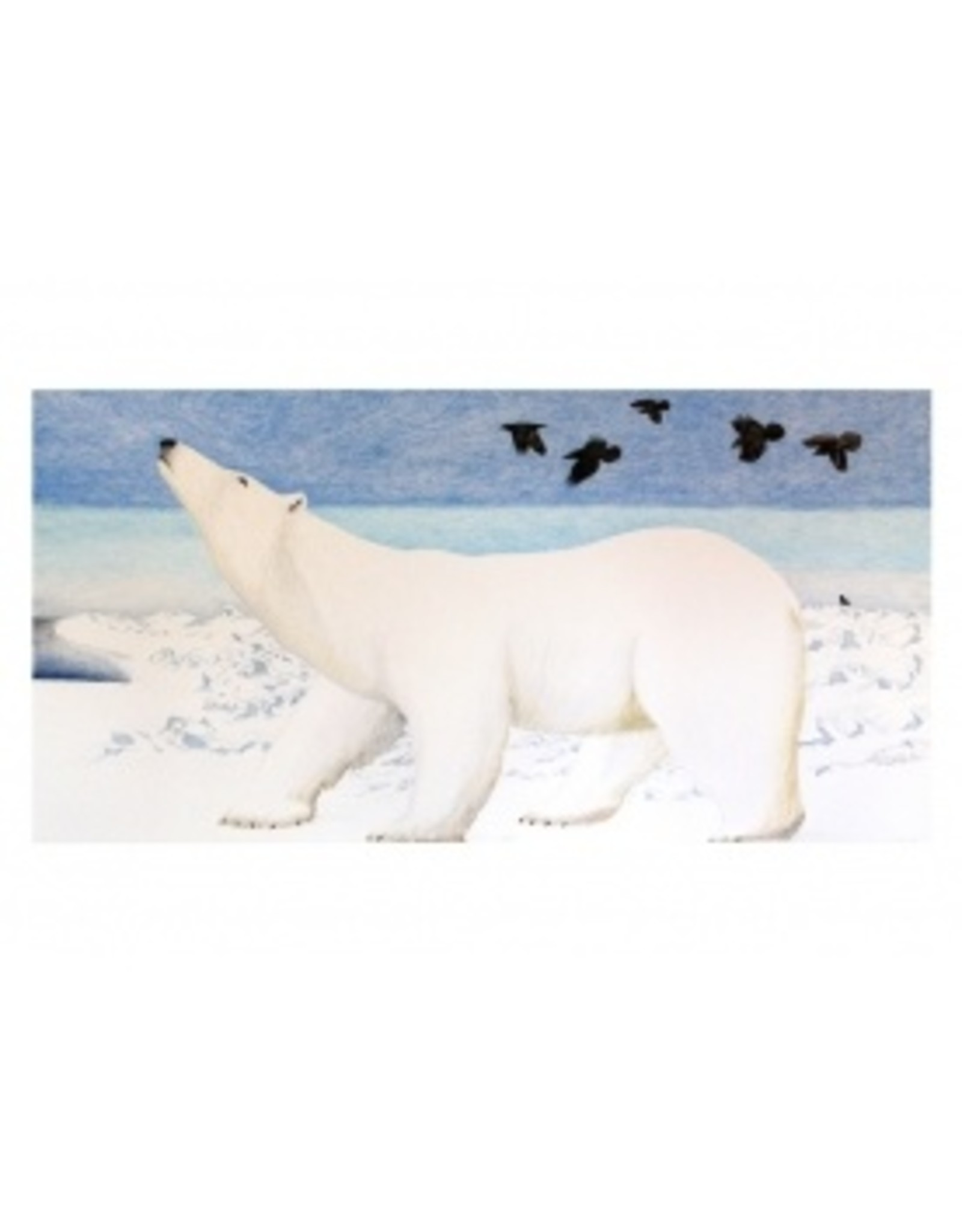 Cape Dorset Art Card: Polar Bear