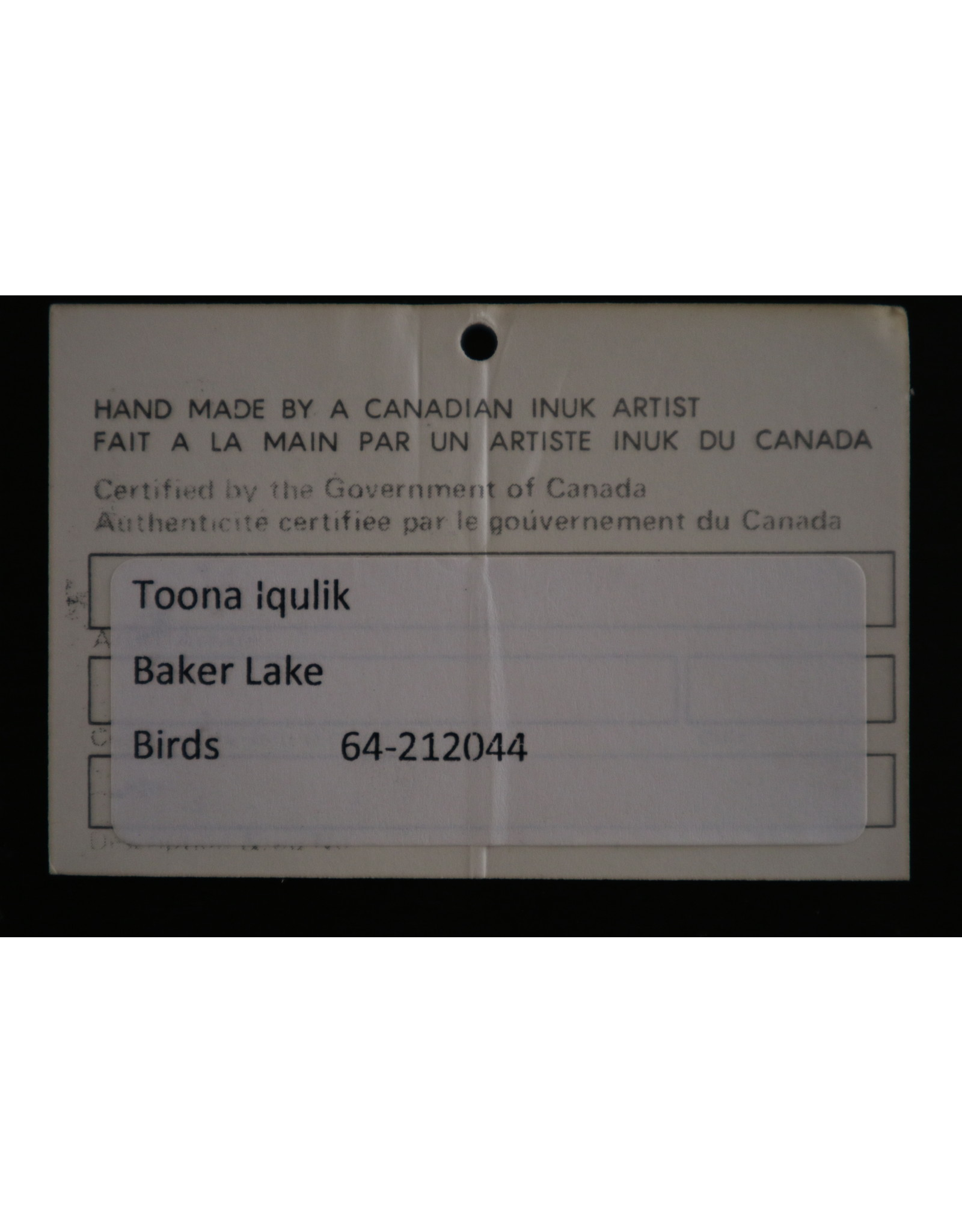 Baker Lake Birds - Iqulik