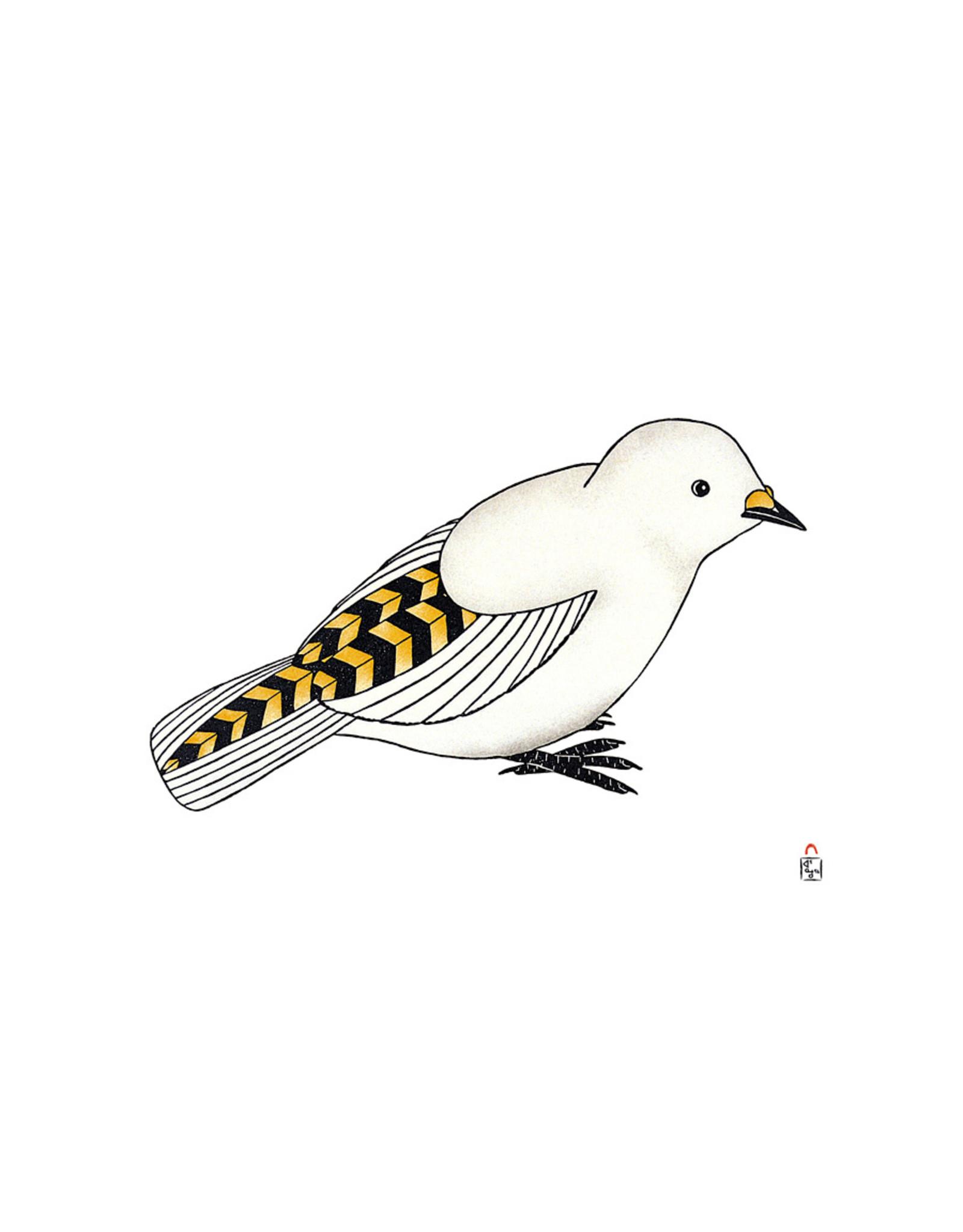 Cape Dorset Art Card: Qupanuaq  (Snow Bunting)