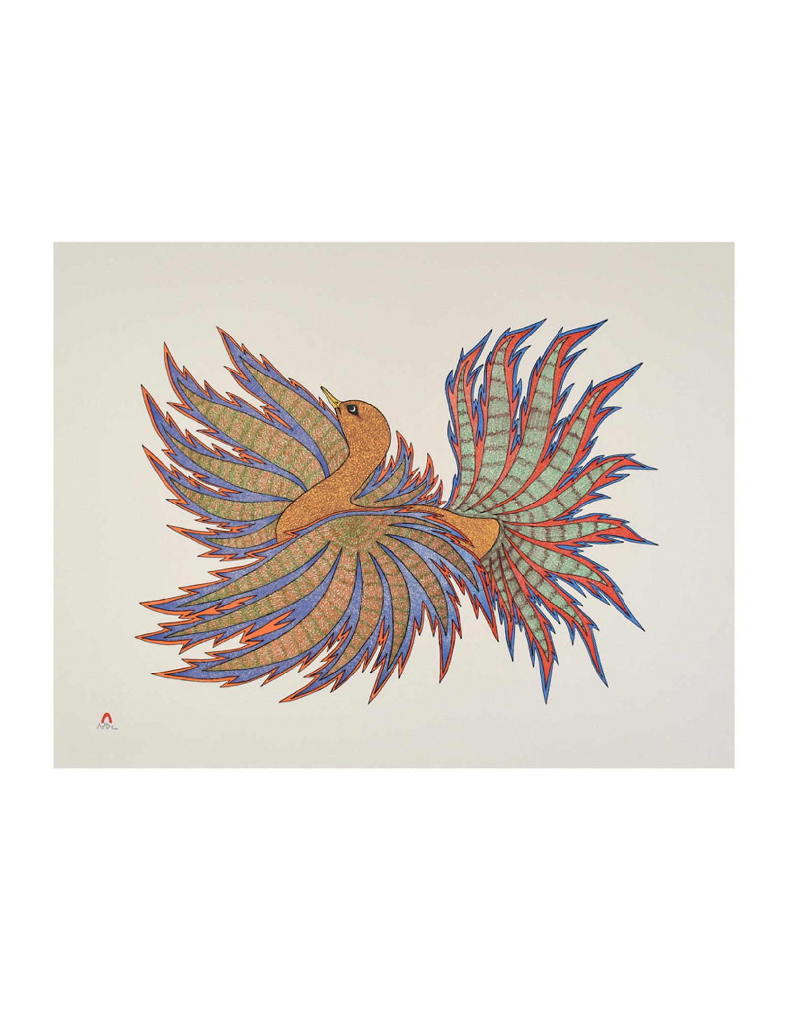 Cape Dorset Art Card: Bird of Baffin