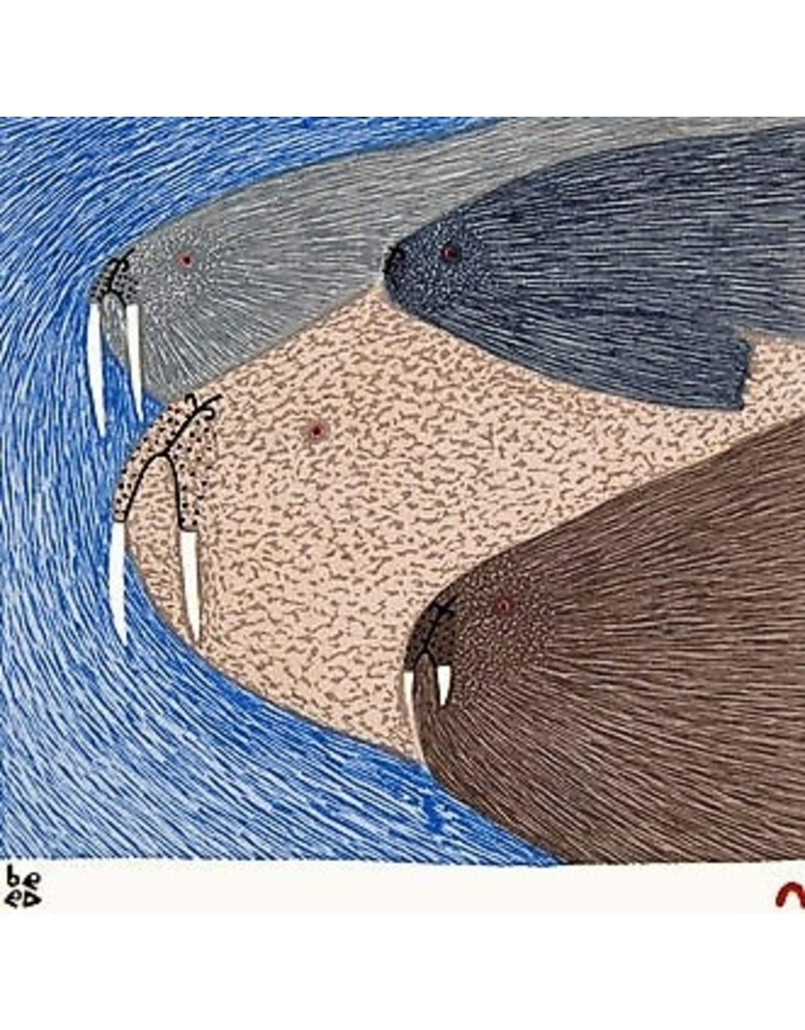 Cape Dorset Swimming Walrus