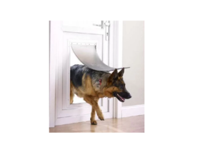 Hondenluik XL