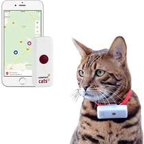 GPS tracker voor katten