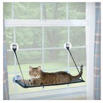 Raam ligbed voor de kat