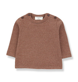 1+ in the family Jasper t-shirt toffee/terrau