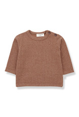 1+ in the family Bulnes t-shirt toffee