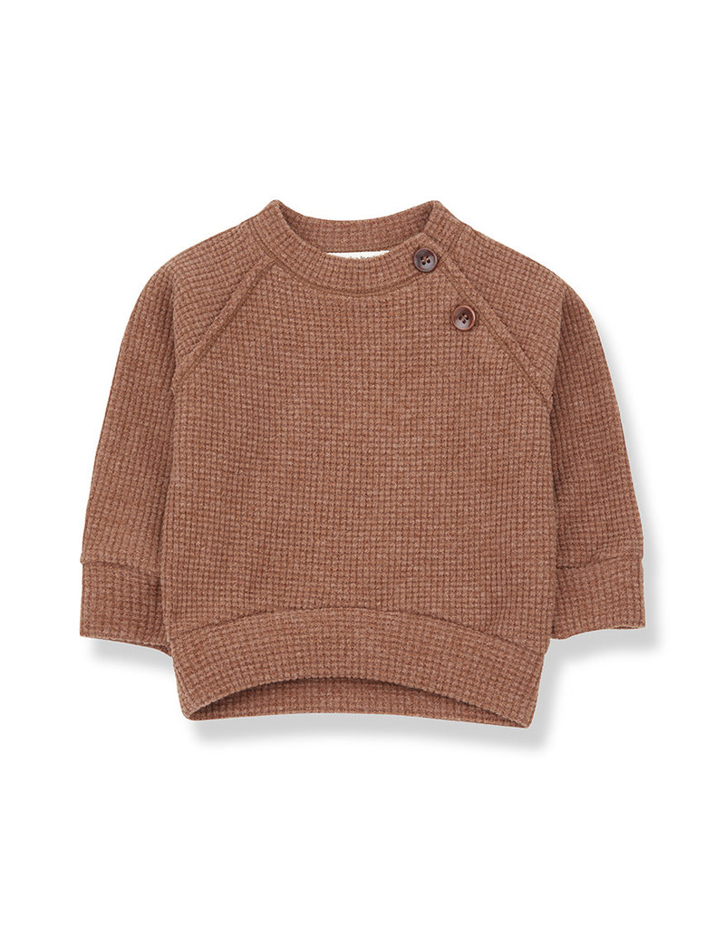 1+ in the family Livigno sweatshirt toffee