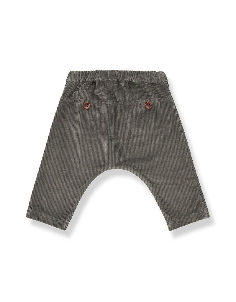 1+ in the family Molina baggy pants terrau