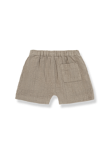 1+ in the family Carme bermuda khaki