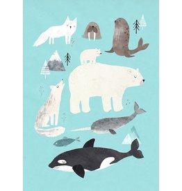 Petit Monkey Postcard Artic animals