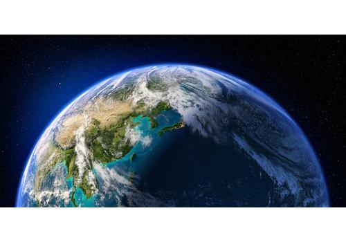 Dutch Art Explosion Love the earth