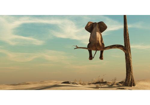 Dutch Art Explosion The life of an elephant