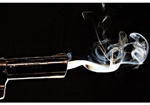 Dutch Art Explosion Smoking gun
