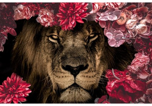 Dutch Art Explosion Flower king