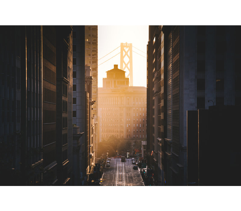Golden morning in the USA