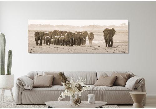Dutch Art Explosion Herd of elephants