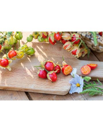 Litschi-Tomate