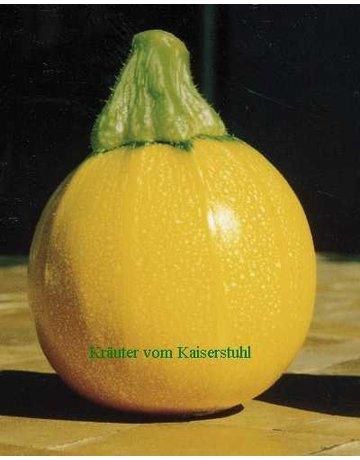 Gelbe Rondini