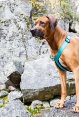 RukkaPets Harnas voor hond - Form