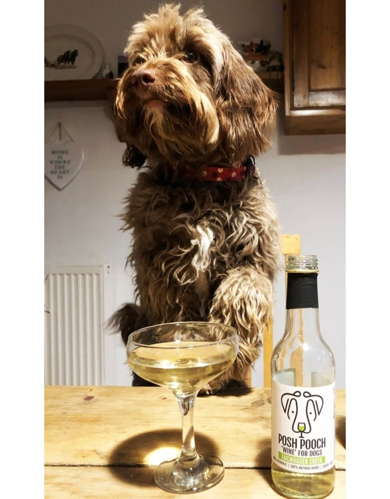 Woof & Brew Pawsecco Pethouse Posh Pooch Wine for Dogs