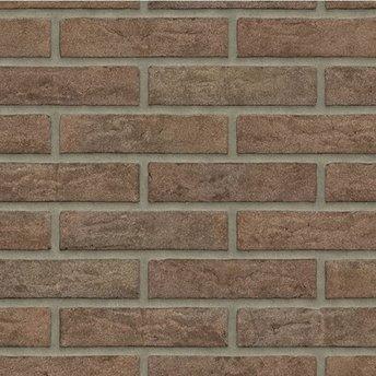 Rijswaard Waalformaat handvorm Maasbruin metselstenen (€0,39)