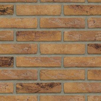 Rijswaard Waalformaat handvorm Gamers Bont metselstenen (€0,39)