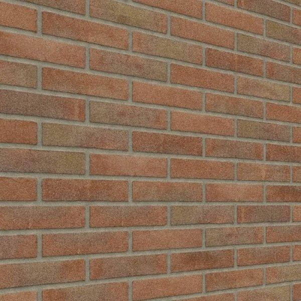 Rijswaard Waalformaat vormbak Roodpaars Reno metselstenen (€0,42)