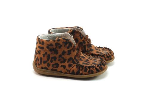 Bardossa Kimba – Leopardo Camel