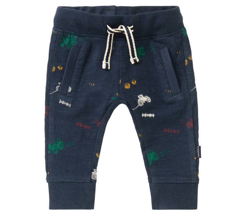 B Slim fit Pants Jansenville AOP