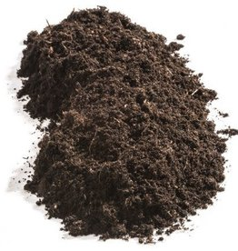 soil /substrate