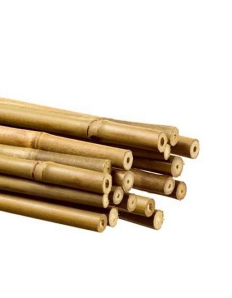 bamboo 90 cm