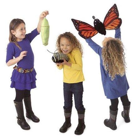 Folkmanis De levenscyclus van een monarch vlinder