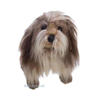 Folkmanis handpop hond Shaggy dog