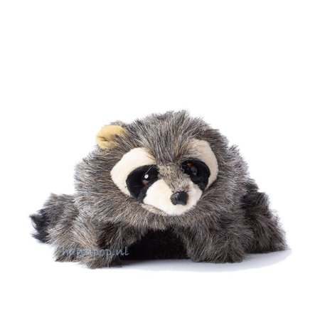 Folkmanis kleine wasbeer