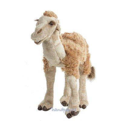 Folkmanis handpop kameel