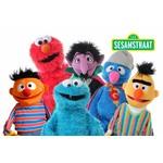 Sesamstraatpoppen van Living Puppets