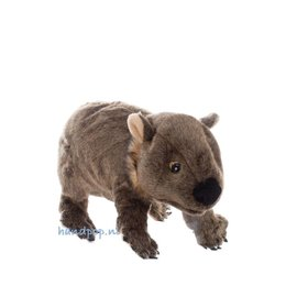 Folkmanis handpop wombat
