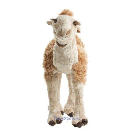 Folkmanis kameel