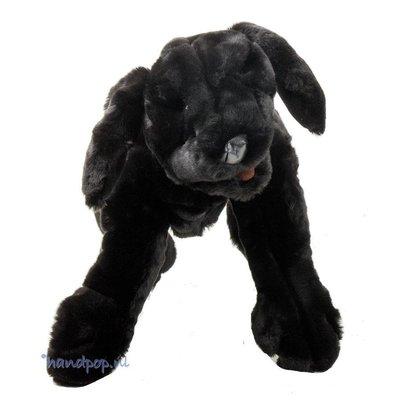 Folkmanis handpop hond labrador pup zwart