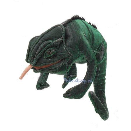 Folkmanis kameleon