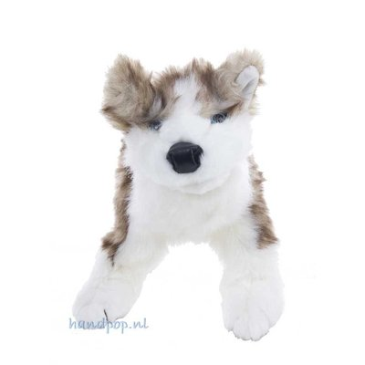 Folkmanis handpop wolf pup