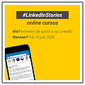 De Recruitment Trainer Online cursus: Linkedin Stories