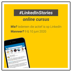 Online cursus: Linkedin Stories
