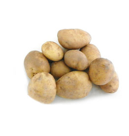 Frieslanders Aardappels Frieslanders nieuw