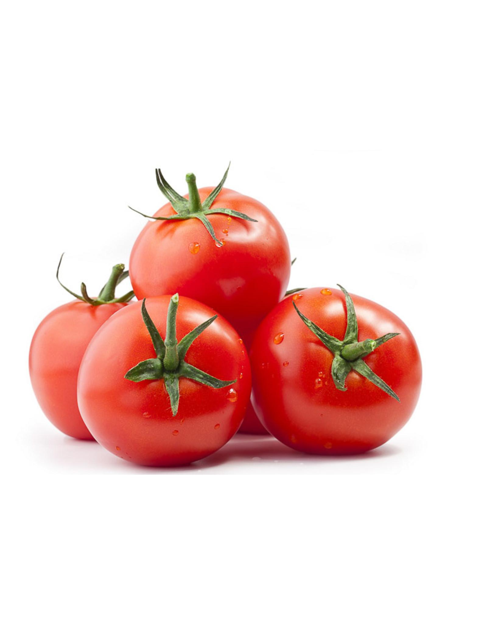 Losse tomaten per 500 gram