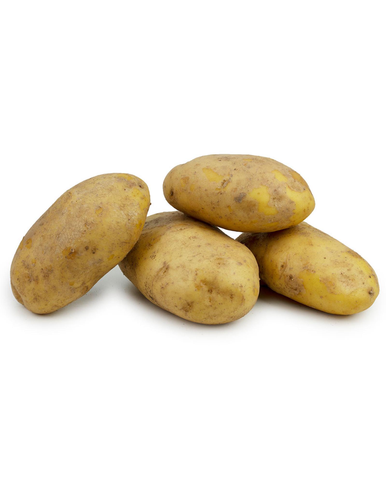 Agria Friet aardappels