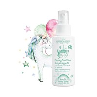 Desinfect Hand Spray (Mint & Tea Tree)