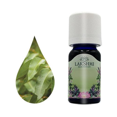 Lakshmi Eucalyptus Radiata - Etherische Olie