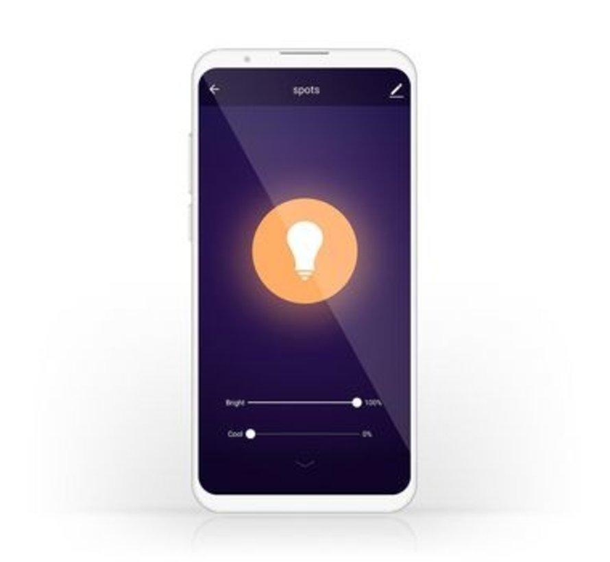 Wi-Fi Warm tot Koel Wit LED Filamentlamp| Gedraaid | E27 | G125 | 5,5 W | 350 lm