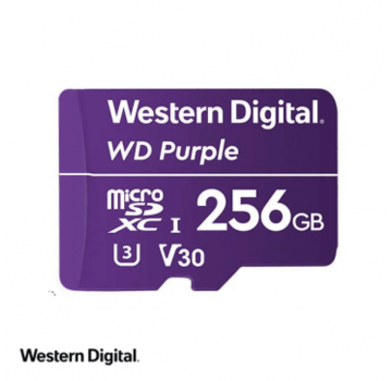 Dahua WD Purple 256GB microSDXC card
